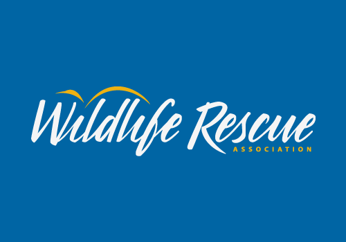 <b>About Wildlife Rescue</b>